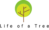 Life of a Tree Coupons and Promo Code